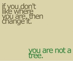 wpid-u-r-not-a-tree